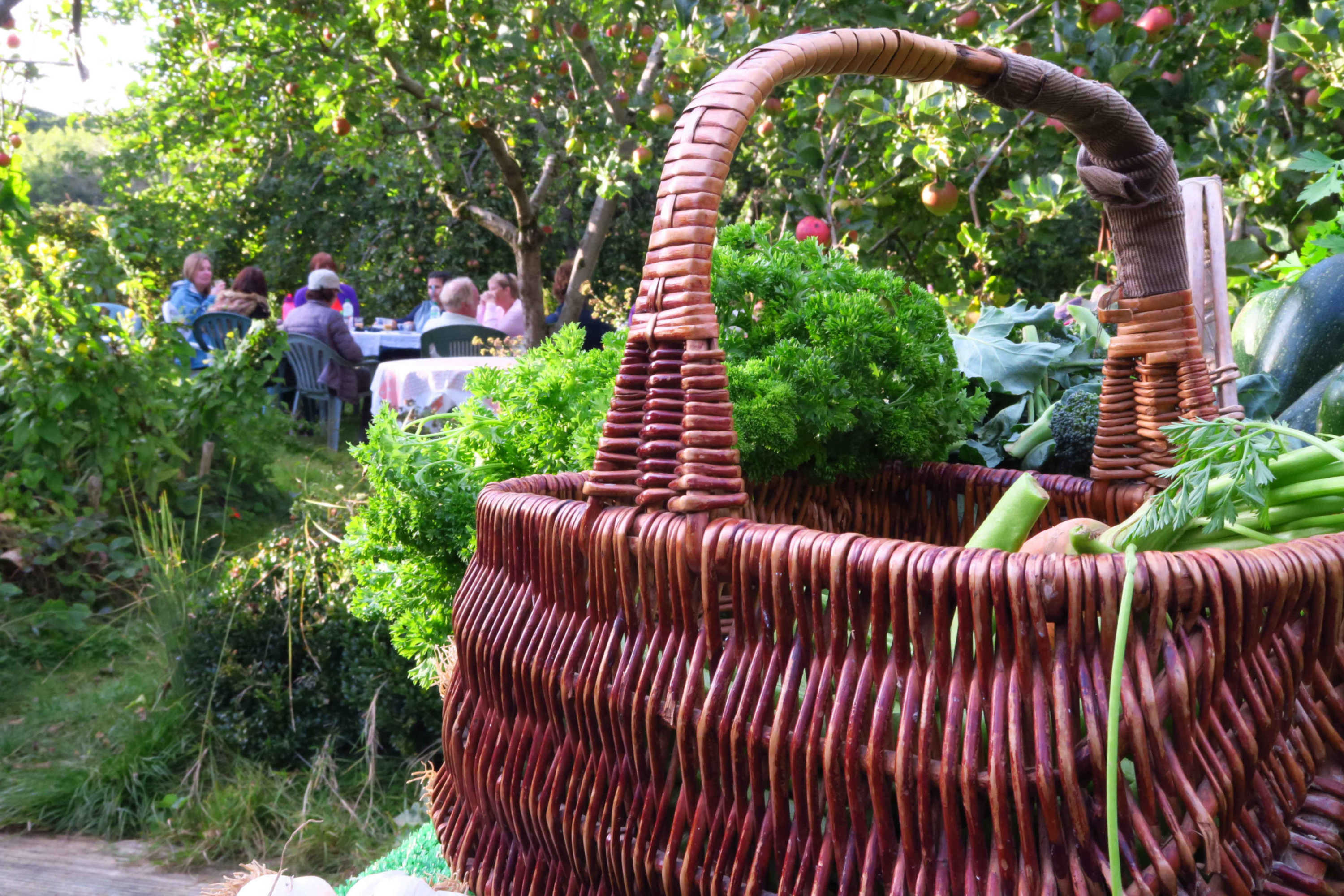 Basket and group in the orchard after a farm walk